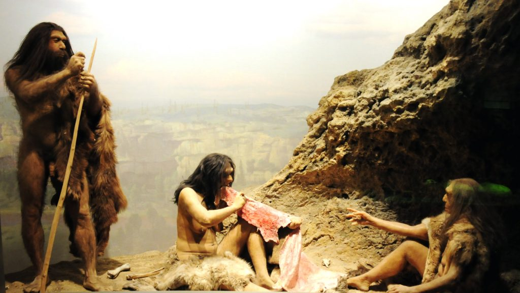 "Image credit: Vince Smith's ""Early Humans Diorama"""